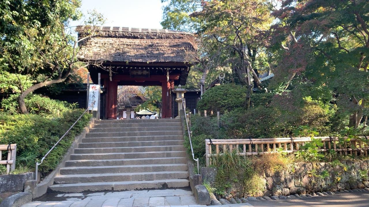 秋の深大寺